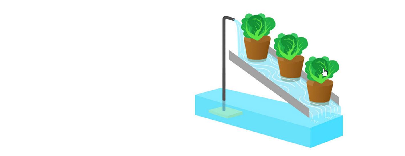 Continuous-flow solution culture
